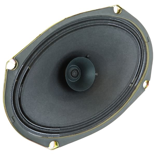 SALE - 6' X 9' Replacement Speaker with Whizzer Cone